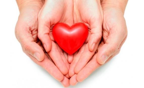 Пиявки при сердечно-сосудистых заболеваниях