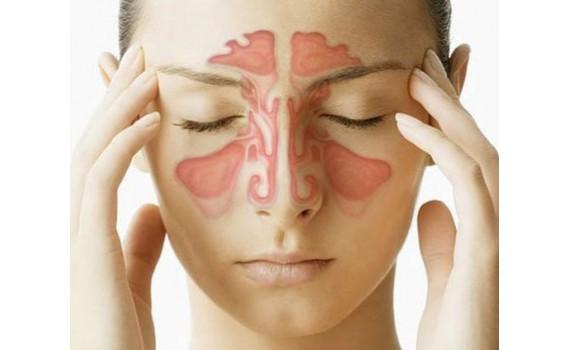 Гирудотерапия при ЛОР заболеваниях